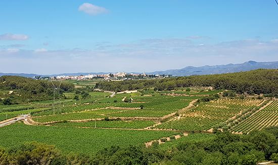 visita alla Catalogna panorama